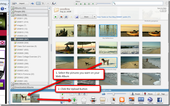how to delete uploaded photos from picasa