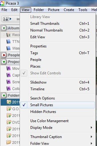 Small Pictures Disappear – Learn Picasa and Google Photos!
