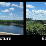 Original vs Edited Photo in Picasa